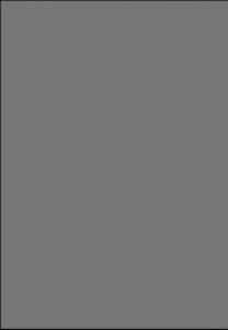 HG 0330 - granit srebrny