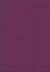 HG 1041 - bakłażan
