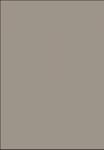 PT 5008 - kamienny szary mat
