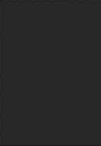 UN 4001 - czarny